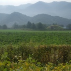 Cycling Up to the DMZ has Spectacular Views