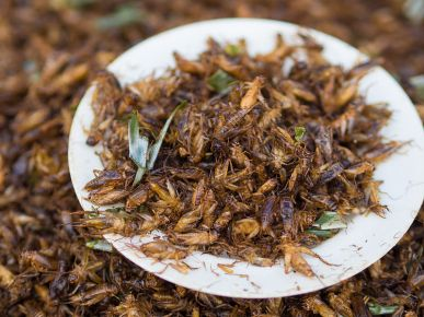 deep-fried-house-crickets